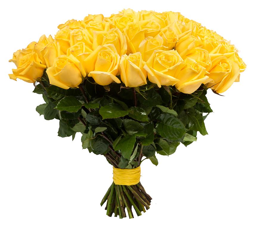 Купить желтые розы в москве